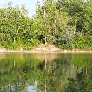Binsfeld-See bei Speyer bzw. Otterstadt